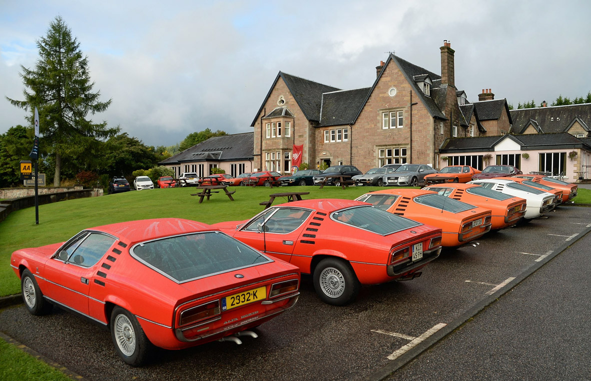 The Alfa Romeo Montreal Website Rear End Group Of Participants